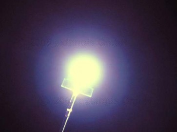LED 5mm short purweiss